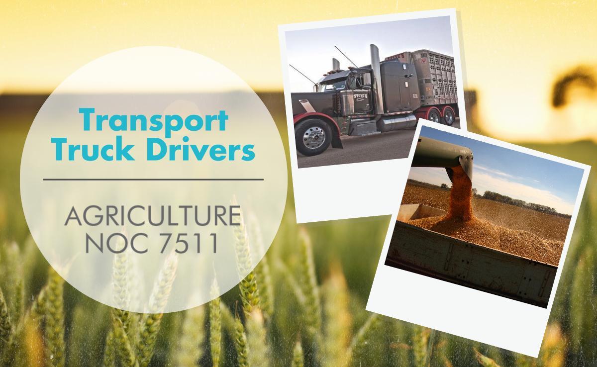 Transport Truck Drivers