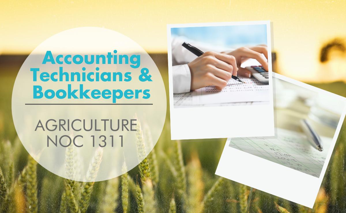 Accounting Technicians and Bookkeepers